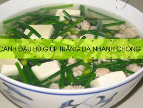 canh-dau-hu 1