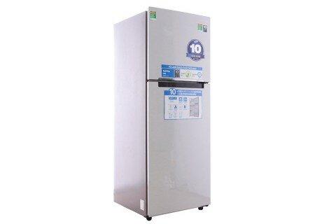 Tủ lạnh Samsung RT29FARBDSA/SV