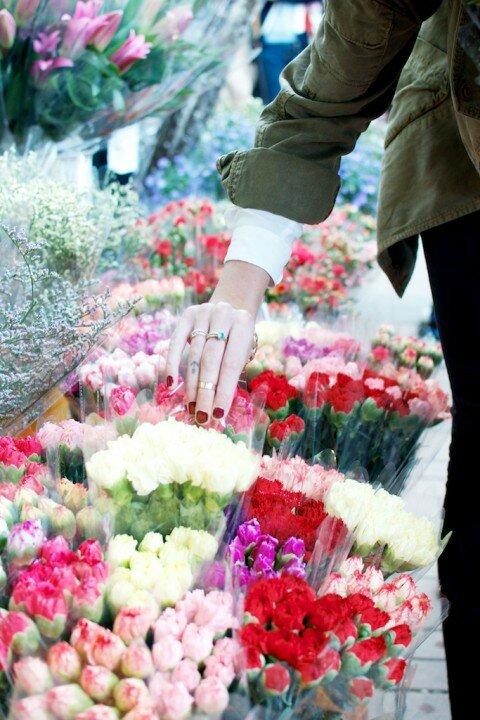 chon hoa 1