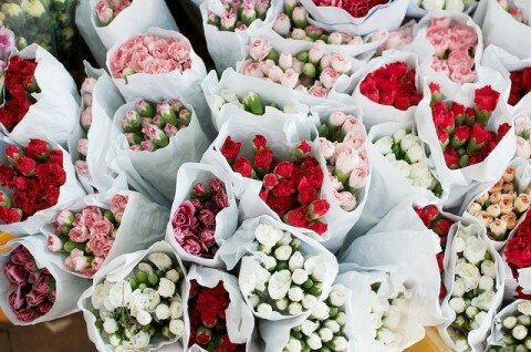 chon hoa 3