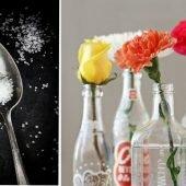 Mẹo hay giữ hoa tươi lâu và vệ sinh chậu hoa