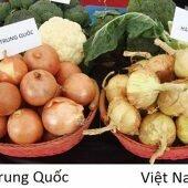 Bỏ túi mẹo hay phân biệt rau củ Trung Quốc