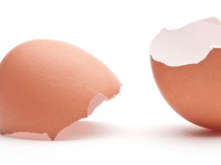 Đây là lý do vì sao bạn không nên vứt bỏ vỏ trứng