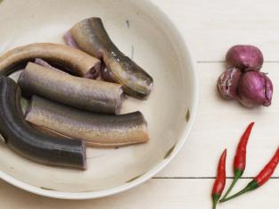 Cách sơ chế lươn và làm sạch lươn đúng cách